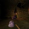 Visite de Demascus,avec Wolfbird (une araignée trouvé !)