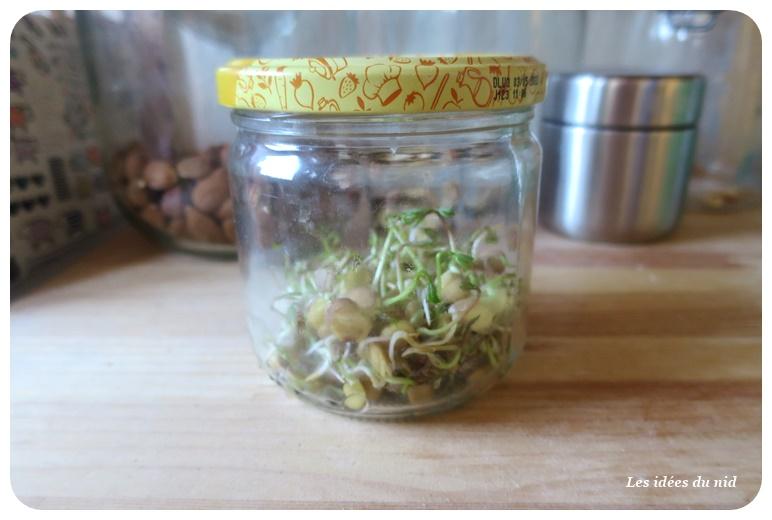 Fabriquer un germoir à graines