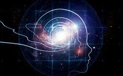 Les dimensions de la conscience