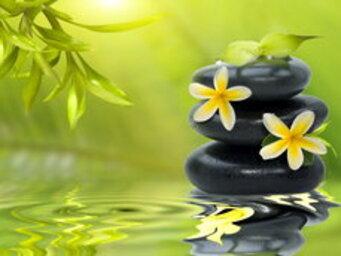 pierres,belle,fleurs,réflexion,beauté,nature morte,eau,vert,traitement,assez,bambou,belle