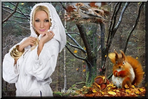 défi Arlette ''le froid en automne''