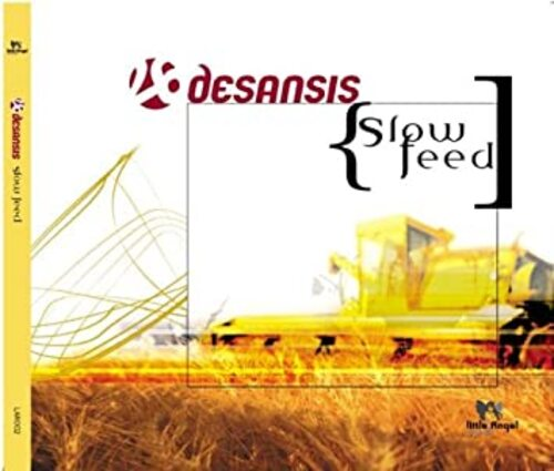 DESANSIS - First Song (2009) (Chillout)