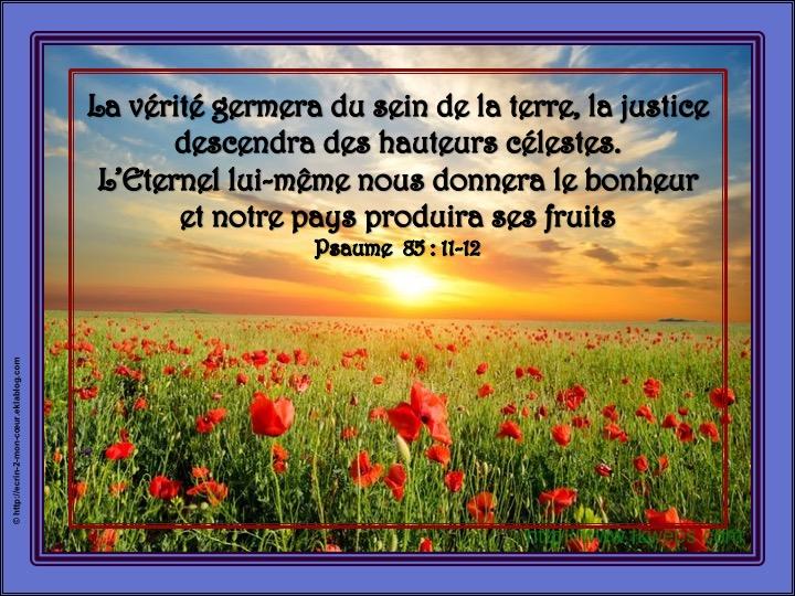 L'Eternel lui-même nous donnera le bonheur - Psaume 85 : 12-13