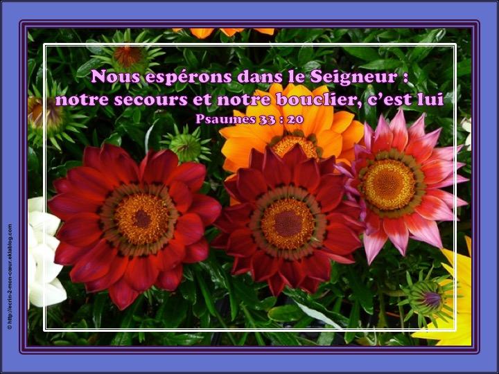 Nous espérons dans le Seigneur - Psaumes 33 : 20