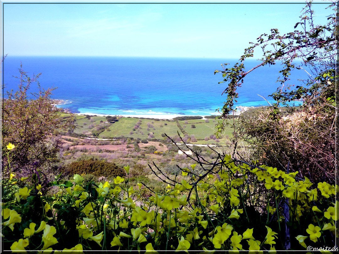 Plage de Corbara - Corse - 28 mars 2014