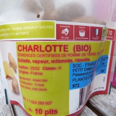 La plantation des pommes de terre...