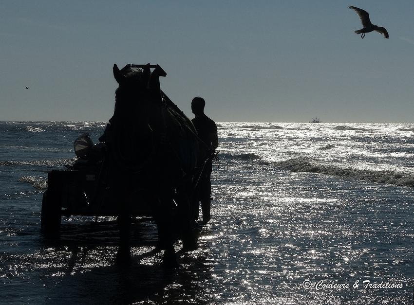 Fin de la pêche