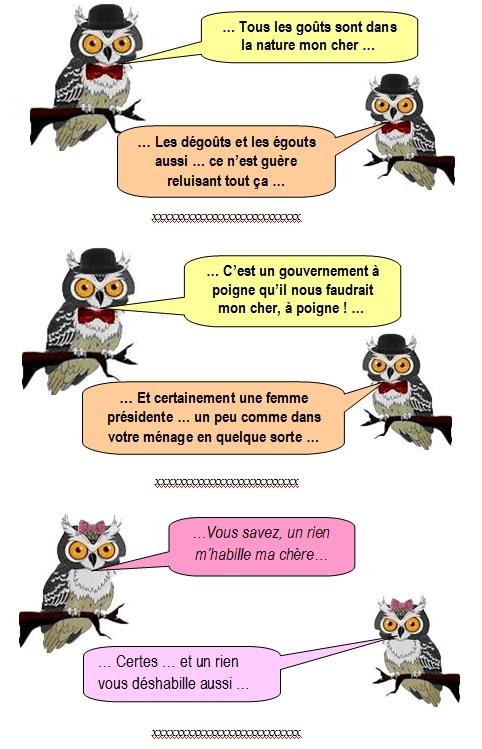 les-chouettes-chouettes-253