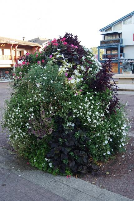 Biscarrosse, ville fleurie.