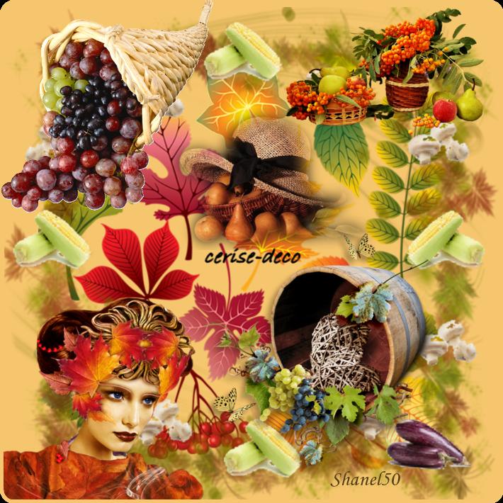 cadre légumes 2 pour vos créations en gif