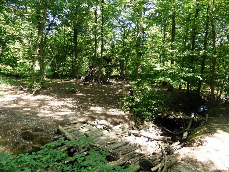Terrain de jeux en forêt