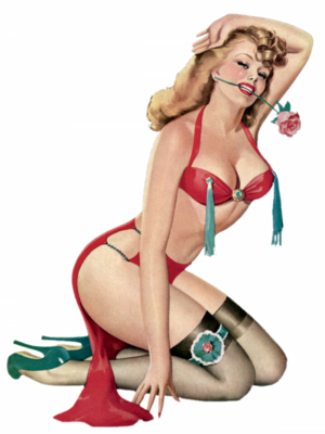 Femme pin up 3