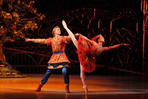 dance ballet firebird ballet