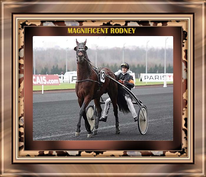 Magnificent Rodney