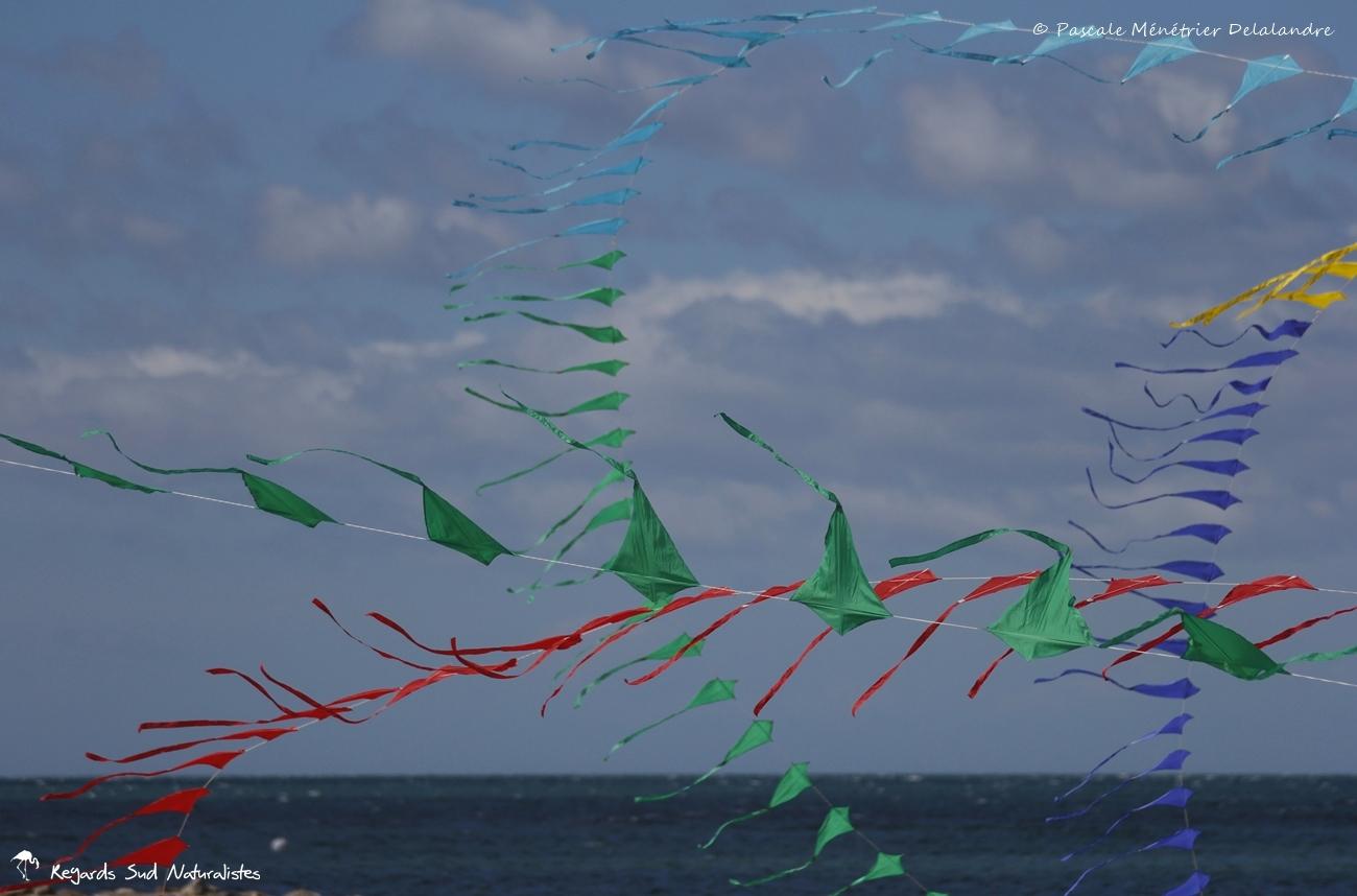 Le vent en couleurs...