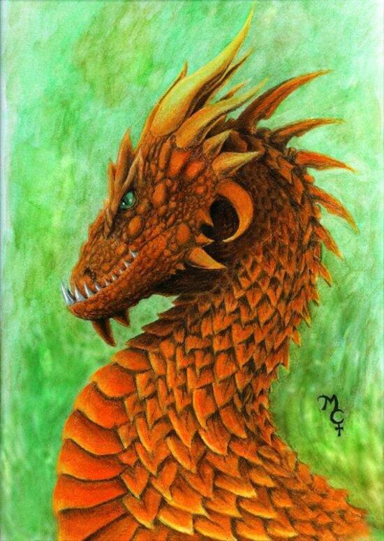 orangedrac3.jpg