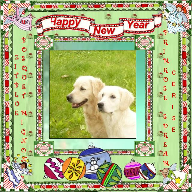new_year_zitablue_cerise22