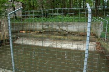 Parc animalier Bouillon 2013 enclos 262