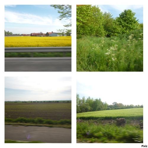 Sur la route (Photos faite par moi )