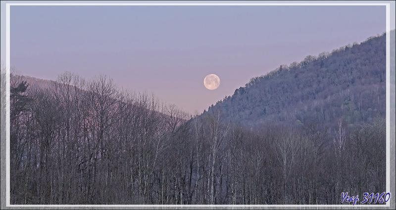 Coucher de pleine Lune au lever du jour - Vu de Lartigau - Milhas - 31