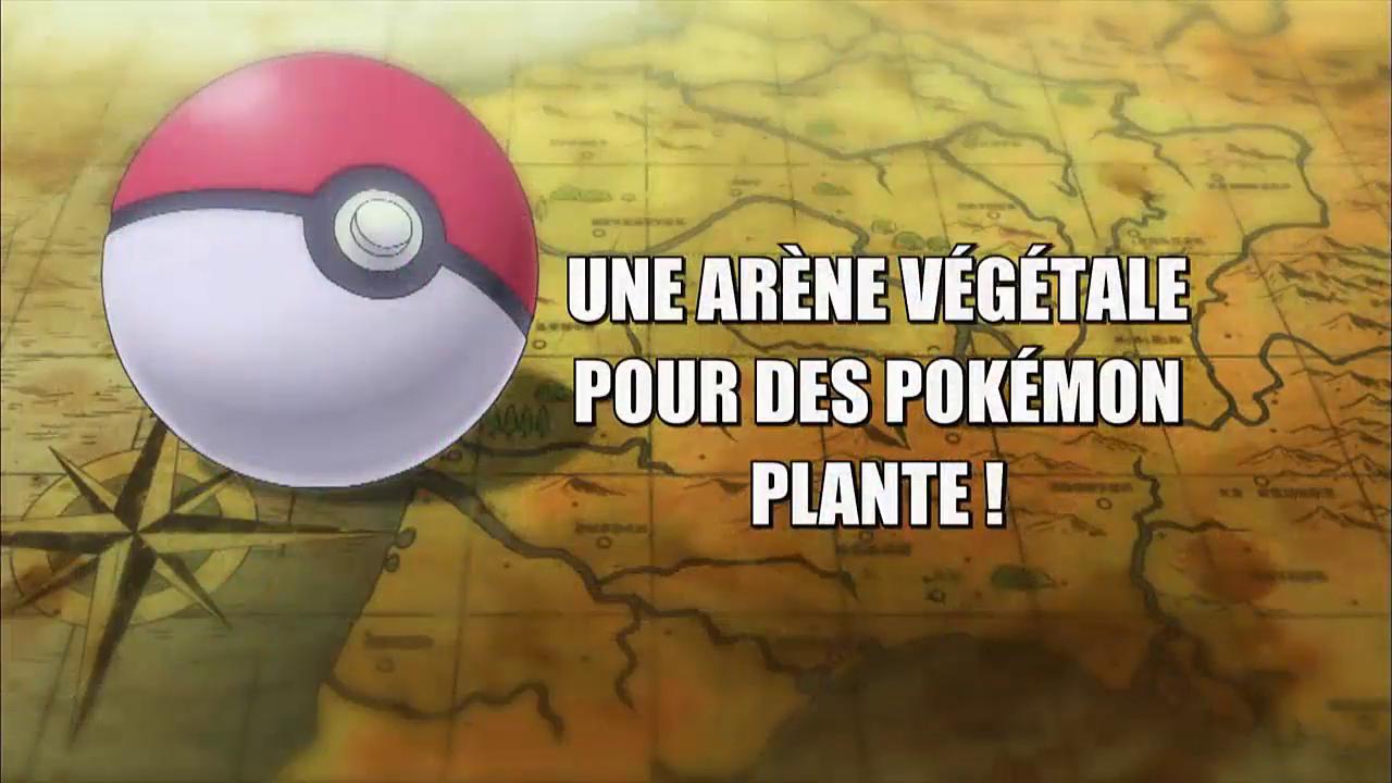 Pokémon - 18x10 - Une Arène végétale pour des Pokémon Plante !