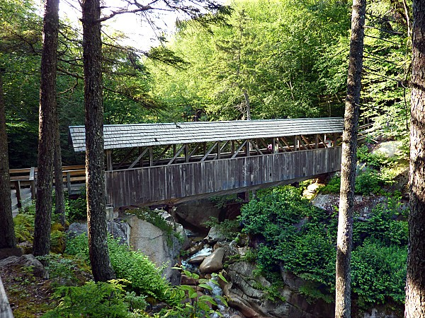 White-Mountains-Flume-Gorge-Sentinel-Pine-Bridge-b.jpg