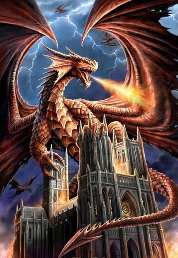 Magnifiques dragons