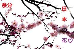 Ikebana : Bouquet du moment 2