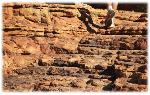 Kings Canyon,notre dernière étape dans le centre de l'Australie