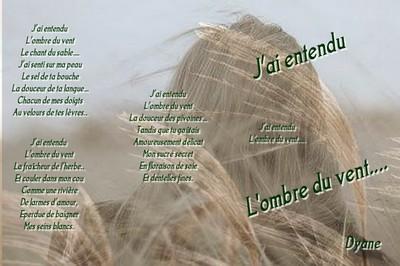 Blog de dyane :Traces de Vie, J'ai entendu l'ombre du vent