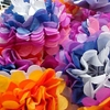 fleur-1158416368 (2).jpg