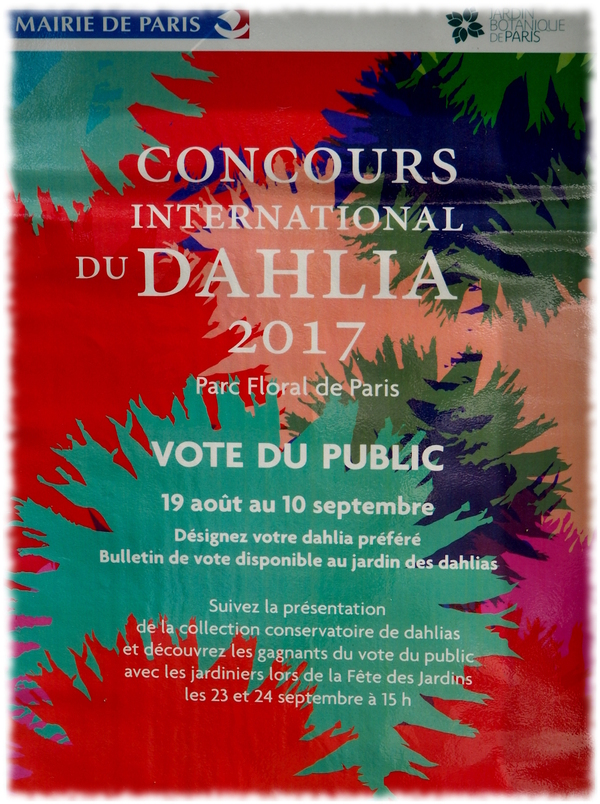 Parc Floral de Paris. Concours international 2017 - Dalhia