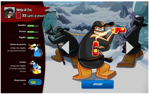 Ninja neige