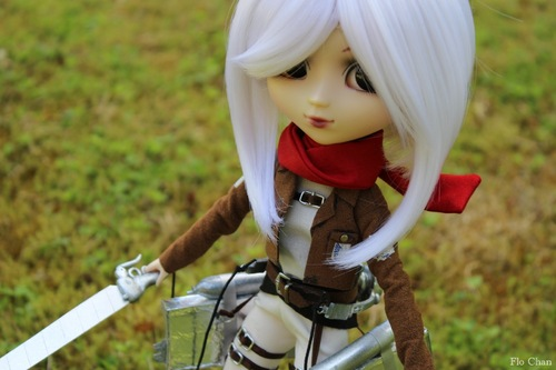 SNK cosplay #35