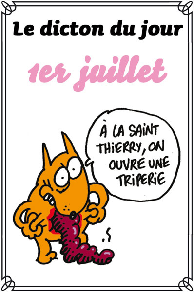 """Résultat de recherche d'images pour """"saint thierry humour"""""""