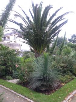 Parc et Jardins