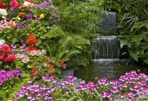 Treasure hunt - Colorful garden
