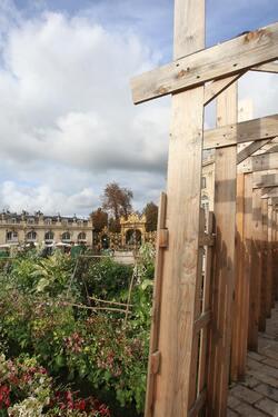 Place Stanislas : le calme avant la tempête ...