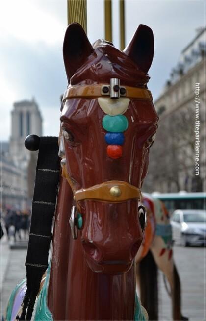 Les chevaux de l'Hôtel de Ville 4
