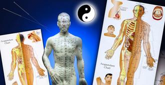 La Science identifie le système de l'autoroute de l'énergie (méridien) dans le corps humain