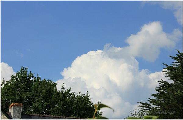 Encore la tête dans les nuages...