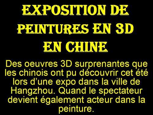 PPS MES CRETIONS Exposition de peintures en 3D en Chine serge
