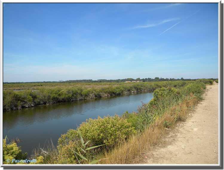 Domaine de Graveyron à Audenge sur le Bassin d'Arcachon