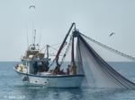 gruissan bateau de peche