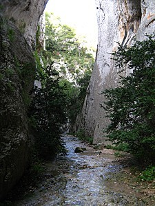 Gorges du Regalon