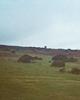 Landes du Devon