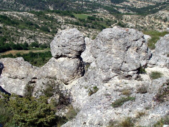 """Les """"tronches"""" de Forcalquier"""