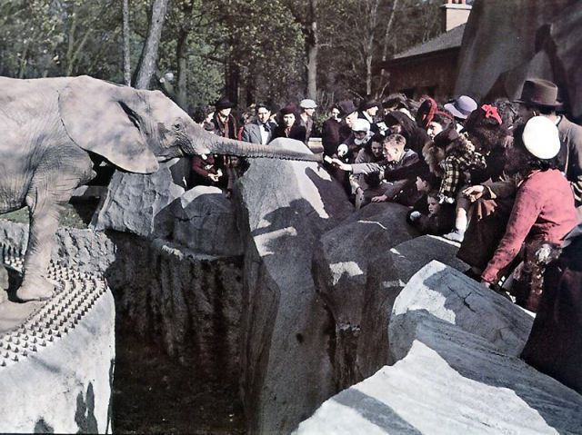 Andre Zucca: Nazi Propaganda Photos - Paris during WW246