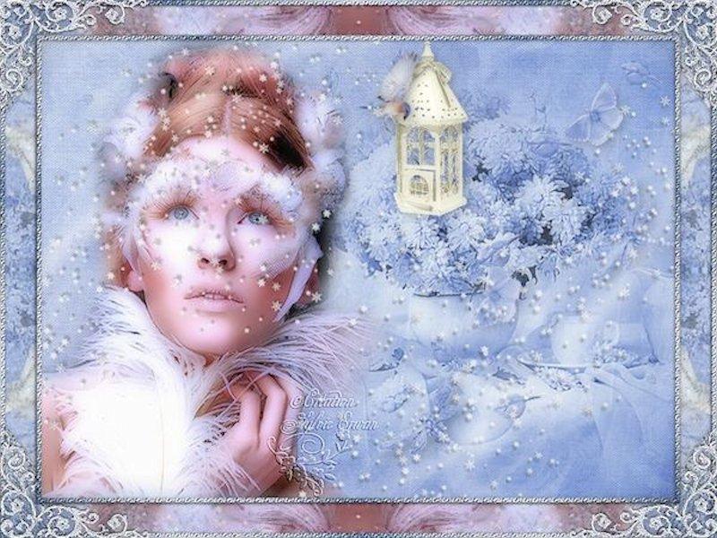 Cadres hiver 51