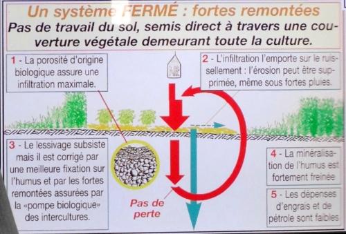 Une agriculture préservatrice de l'environnement...